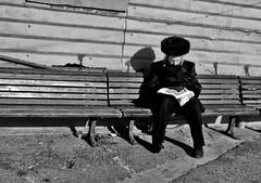 reading (_tonidelong) Tags: travel viaje reading israel tel aviv pascua jew rabbi rev orthodox reb passover pesach rav jaffo rebbe rab rebe pesah hassidic rabino hassidi top20jewish