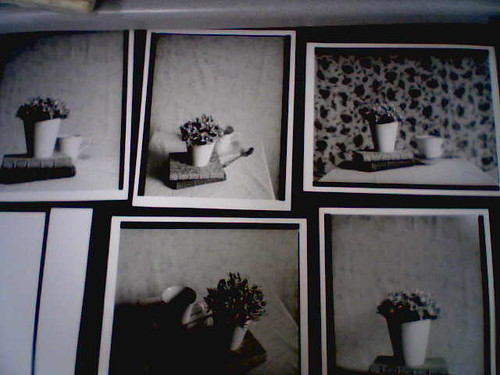 Prints on the Drying Rack  �  4.21.07