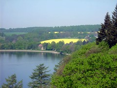 Germany in April (morgarna64) Tags: trip trees light lake colour tree water deutschland see licht wasser natur himmel bume baum natures staumauer talsperre mhne mhnetalsperre