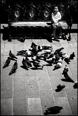 ... (Gabriel M.A.) Tags: street bw smile sepia méxico digital canon bench pigeons 5d sonrisa palomas fullframe toned f28 plazadearmas slp 75mm sanluispotosi tamron2875f28 sanluispotosí wnwthebirds tamronapaf2875mmf28xrdi ciudaddesanluispotosí