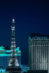 Cold Reality (cwgoodroe) Tags: vegas vacation favorite holiday gambling paris animals night relax pentax lasvegas weekend signature relaxing july filter mgm ist 31 pentaxist sfchronicle96hrs mgmsignature july312007 31july2007 50favorite