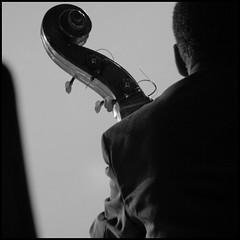 il figlio di Segundo in concerto (kilometro 00) Tags: blackandwhite bw nw bn concerto musica segundo biancoenero treviso musicista strumento trevision focuslegacy
