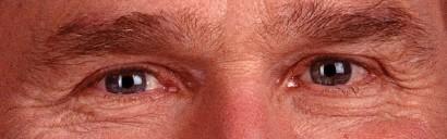 eyes_bush
