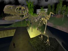 Prim Velociraptor