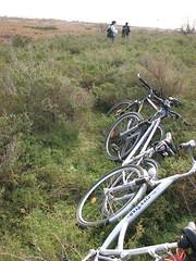 Abandonning the Vélos (kahala) Tags: dru bike bicycles vélo étang camargue balade méjanes etangdevaccarès arlesbykahala