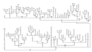 Phylogenetic tree of East Asian macro-haplogroup M