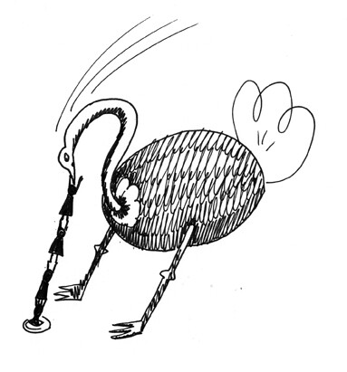 avestruz2 web
