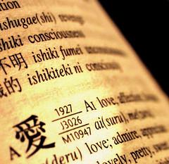 the way I feel about you (still) (Dan65) Tags: macro love japan japanese book poem 14 valentine kanji irene feeling february dictionary 2007