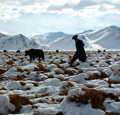 * (*Gentle Wind*) Tags: china terrain mountain snow landscape xinjiang pamir 10faves aplusphoto