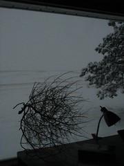 SNOWBOUND (sovietsleeper) Tags: january february a610 zenko