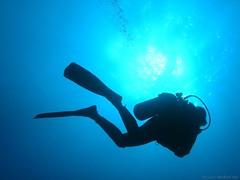 Dive! (Michael Rys) Tags: 15fav hawaii loveit bigisland kona