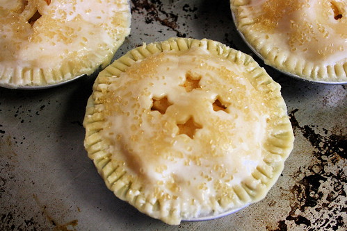 for a littlethis mini bears inch pie i mar nuts
