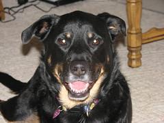 Nellie smiles