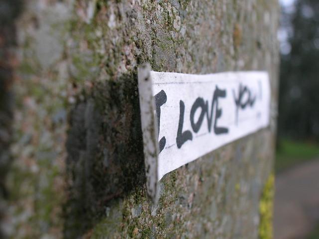 still love