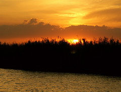 Sunset in the Everglades - by MrClean1982