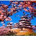 姫路城:Explore 188 姫路城「白鷺城」