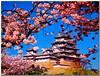Explore 188 姫路城「白鷺城」