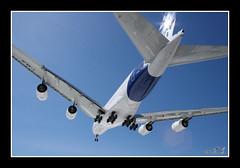 A380  THE GIANT ! - by WTL photos