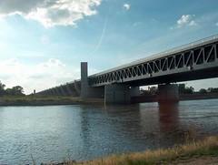 今日圖片:跨江水橋