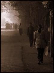 Walk alone (shubhangi athalye) Tags: morning light sunlight india sepia sunrise morninglight earlymorning bombay maharashtra mumbai colony lightstreams aarey playoflight walkalone suryaprakash sakaal