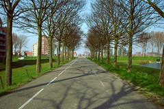 this way plz. (minimaxwell90) Tags: road trees dike carnisselande