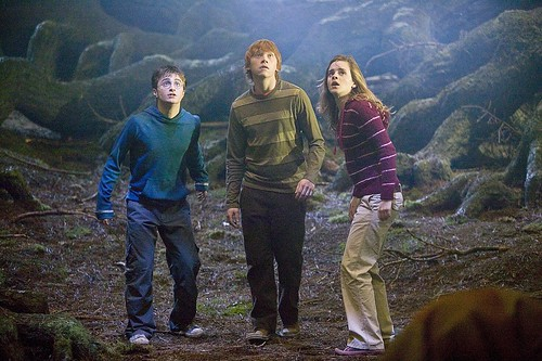 Harry potter orden fenix Hermione y Ron