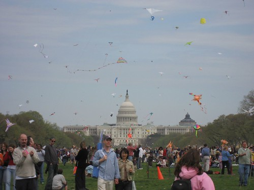 Kites Fly Outside the Capitol Building