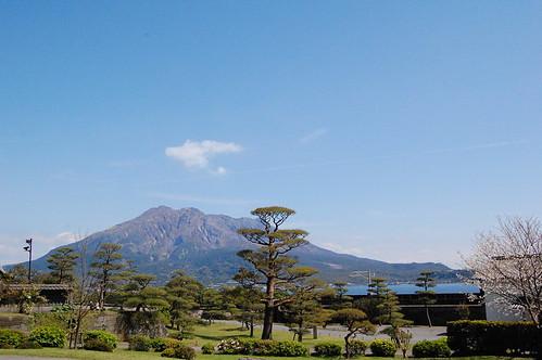 Iso garden Sakurajima