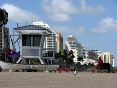 Life Guard Tower (Eddie Birk) Tags: vacation beach buildings sand florida seagull lifeguard fl ftlauderdale lifeguardtower