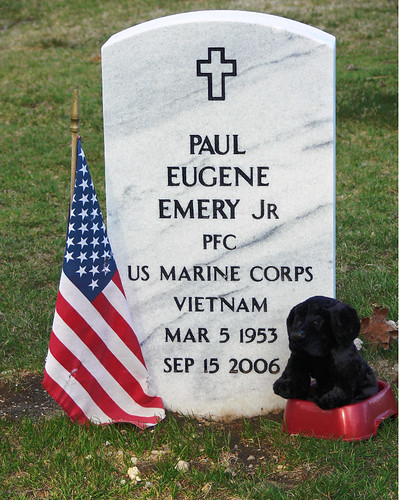 Melrose Cemetery #2