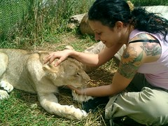 (Vanya Simeonova) Tags: lionpark