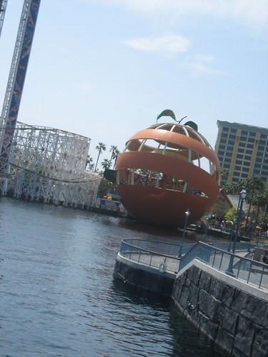 orange peel swings