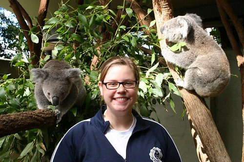Me and some koalas.
