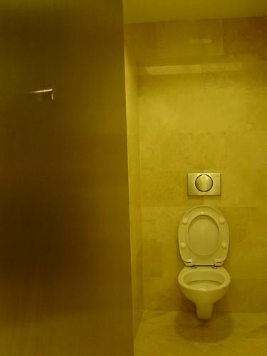 Ampliación del Museo del Prado. Baño