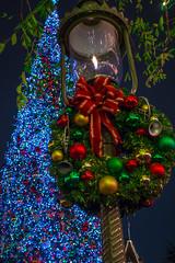 A Wreathe and a Tree (Domtabon) Tags: california christmas dl dlr disney disneyland disneylandresort holidays mainst mainstreetusa mousewait