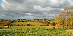 Wing Burrows towards Wing Grange (AndyorDij) Tags: wingburrows autumn trees fields hedgerow wing england rutland uk unitedkingdom 2016 andrewdejardin