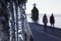 Icy days (seralam191) Tags: vancouver british columbia seawall ice people sea