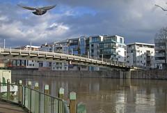 """View to the Kassel-district """"Neue Unterneustadt"""" - 04 (A-C-K) Tags: city water river town wasser flus fluss fulda kassel mywinners wwwackonlinede"""