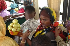 On the bus to Jigjiga - three