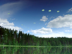 UFO fleet (ZeroOne) Tags: reflection nature water suomi finland landscape upsidedown dscv1 i500 interestingness323 scoreme42 cm081 explore20070129
