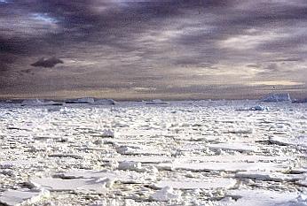 Peter I Island - Antarctica, view offshore