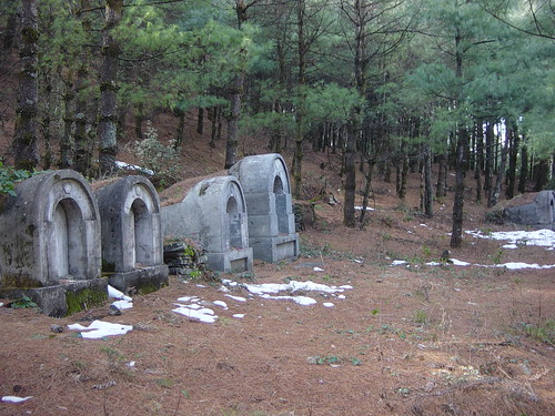 cementerio forestal