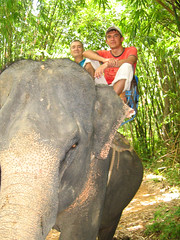 Я на слонике.