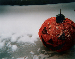Porch (neekatnite) Tags: stilllife snow pumpkin jackolantern porch ansco50