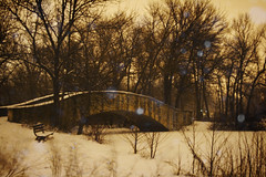 Winter Solitude at Tenney Park - by WisDoc