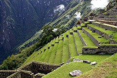 The Terraces - Machu Picchu - The Lost City of The Incas - Peru ({ Planet Adventure }) Tags: holiday 20d peru southamerica canon photography eos photo interesting holidays photographer canon20d explorer ab 2006 adventure backpacking planet iwasthere machupicchu canoneos allrightsreserved interessante havingfun aroundtheworld stumbleupon copyright visittheworld ilovethisplace interrestingness travelphotos placesilove traveltheworld travelphotographs canonphotography alwaysbecapturing worldtraveller planetadventure allrightsreserved lovephotography theworldthroughmyeyes beautyissimple tedesafio abigfave loveyourphotos theworldthroughmylenses shotingtheworld by{planetadventure} byalessandrobehling icanon icancanon canonrocks selftaughtphotographer phographyisart travellingisfun {planetadventure} theincaadventure alessandrobehling copyrightc copyrightc20002007alessandroabehling stumbleit alessandrobehling copyright20002008alessandroabehling