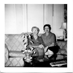 image_01_803 (bellhalla) Tags: plants square florence texas unitedstates katie poinsettia leon 1950s prints 20thcentury geotag orientation sizes seguin processor familymembers 8431 photospecs stockcategories 602ecourt 3x3 bateyfamily filmcodes flickrmaintenance
