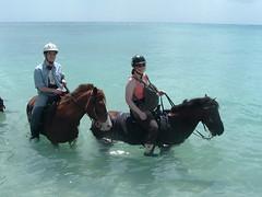 St. Maarten Horse Ride