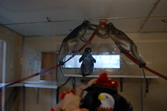 Monkeys (Eldritch_the_dragon) Tags: red nature animals toy happy zoo dragon brothers visit plush enjoy bamburgh learn dayout twycross eldritch