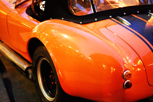 Cobra from the Rear